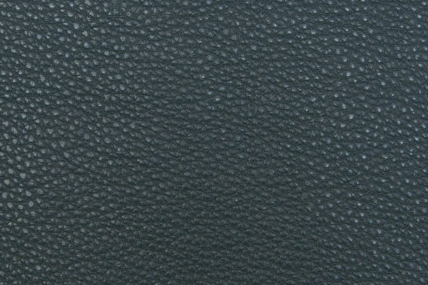 bionica-oceanA113352A-F78C-3AD6-71D1-AAD8000DF5F2.jpg