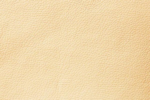 cream-brulleC61C228D-C9D2-2B69-337D-CC11A4D44FE2.jpg